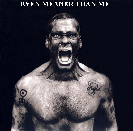 henry rollins is meaner than me