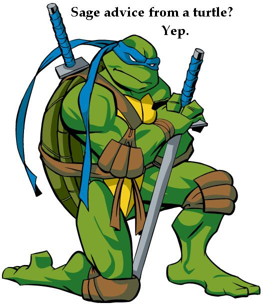 Teenage Mutant Ninja Turtles leonardo.jpg