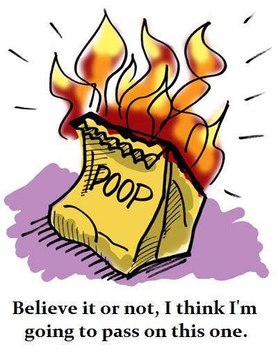 flaming bag of poo